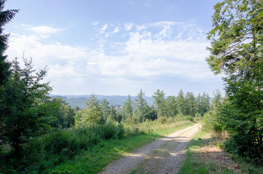 """Nature campsite """"Am Naturschutzgebiet"""" #15"""