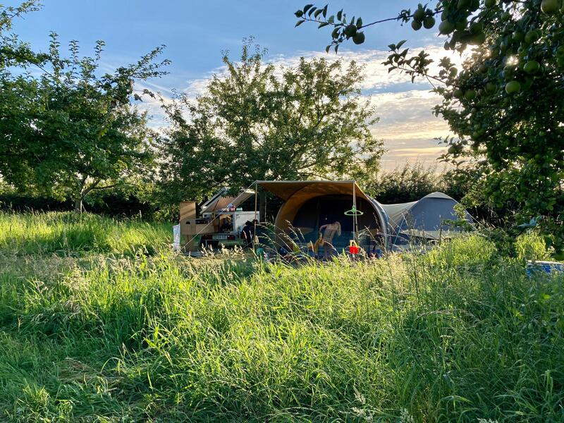 wonderful camping spot in the middle of nature #3