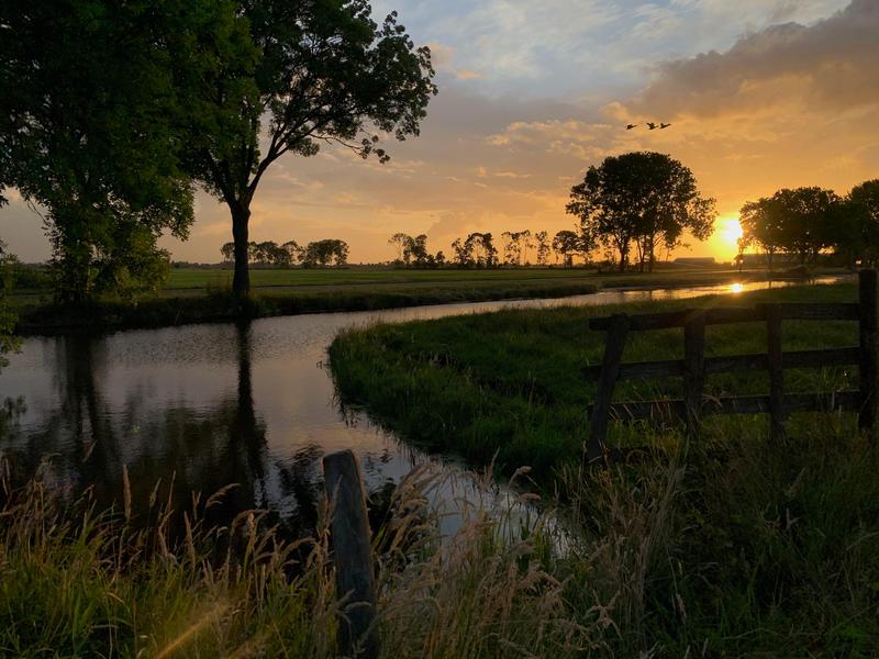 Kom tot rust op boerderij midden in de polder van de Alblasserwaard #8