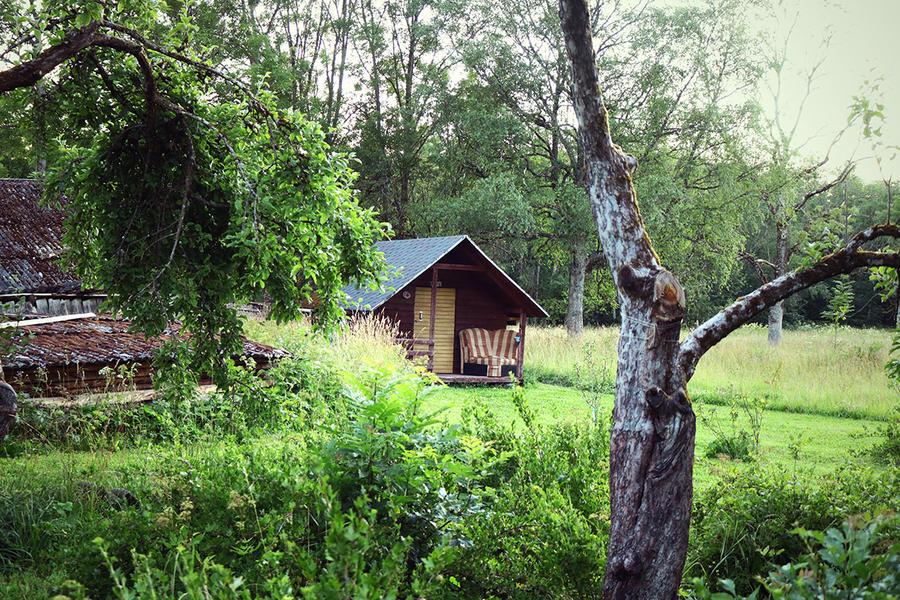 Camp near beautiful Marimetsa and Matsalu nature reserve #1