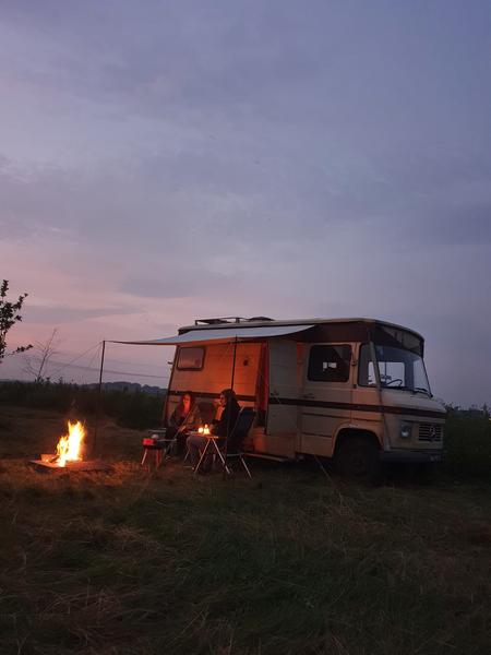 Camping in the tall grass near our food forest in the Westerkwartier #2