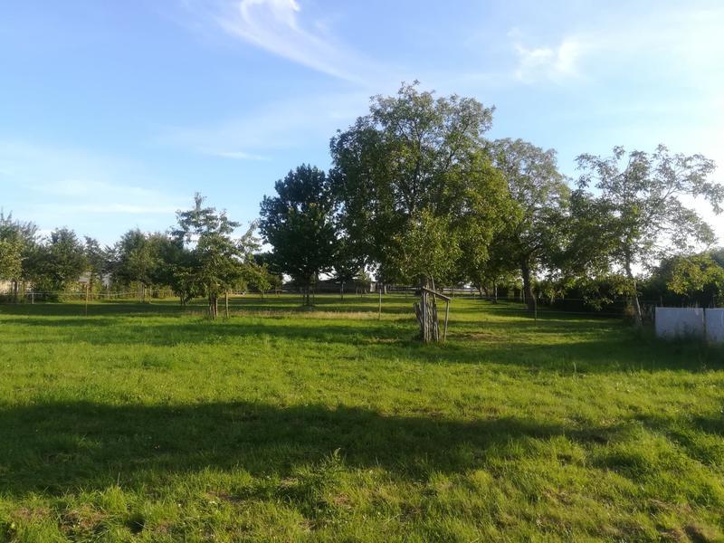Idyllische plek in het Pajottenland. #4