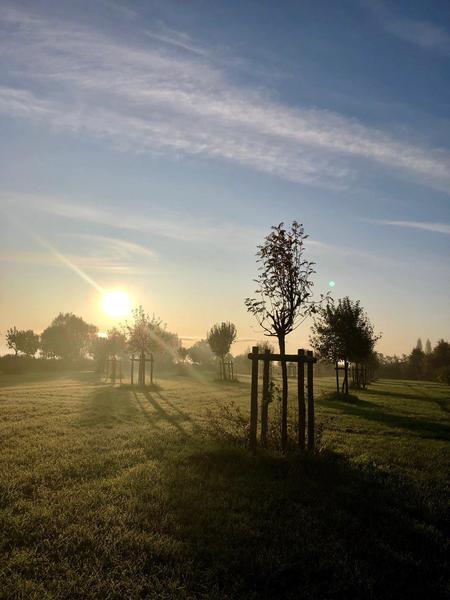 Een landgoed met wei, bos en fruitbomen #5