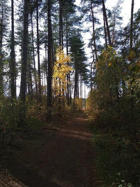Anneke Pannekes Paradies für Camper oder Ihr eigenes Zelt #5