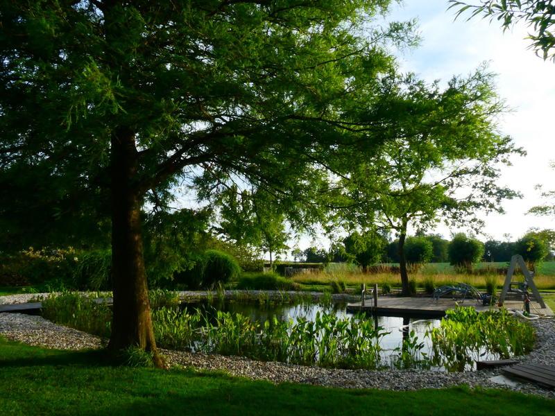 Camper spot on a quiet yard in the polders of Zeeuws-Vlaanderen #9