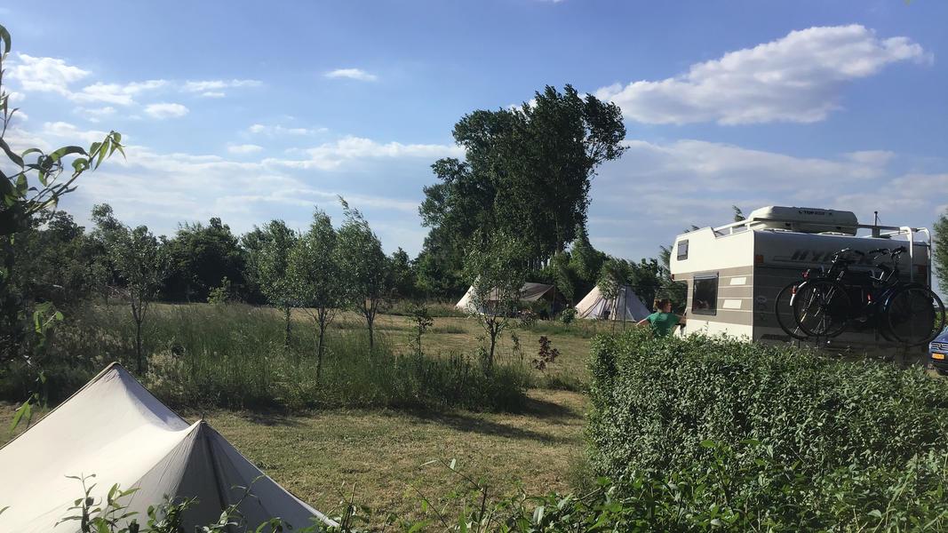 Camper plek op landgoed met zwemvijver, vuurplaatsen en 2ha wandelgebied #33