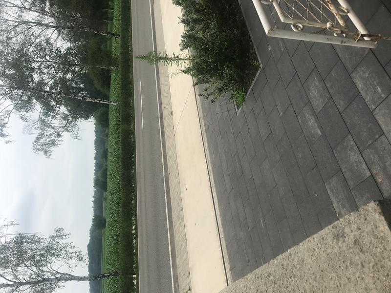 Leuke tuin in de Kempische natuur vlakbij Turnhout, Kasterlee en Herentals #2