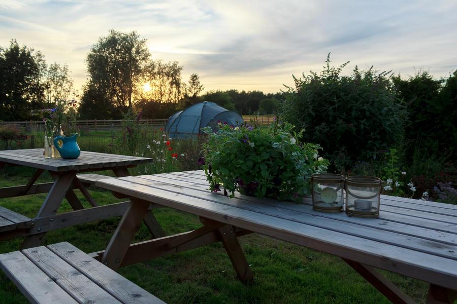 Beautiful camping spot at a farm #7