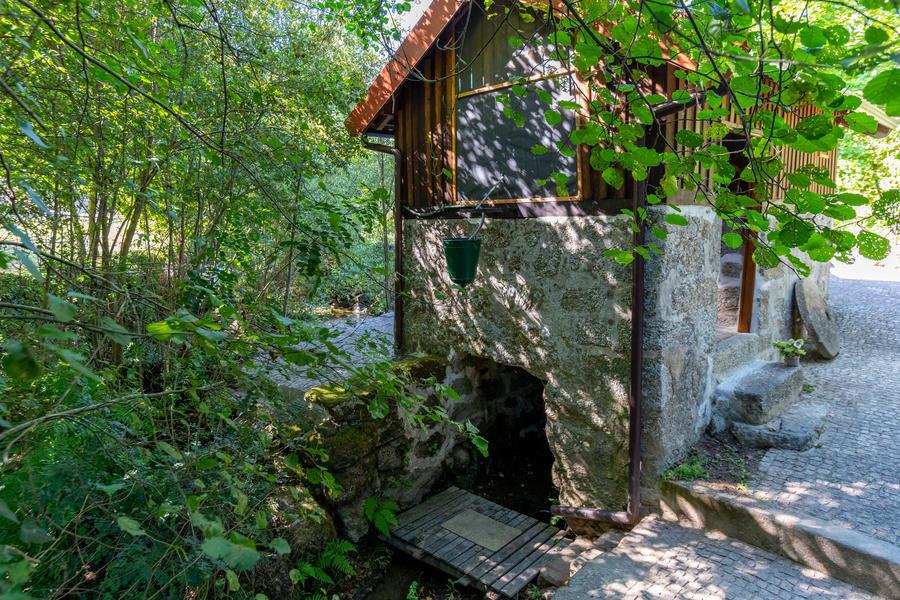Rodizio Mill - Campspace #4