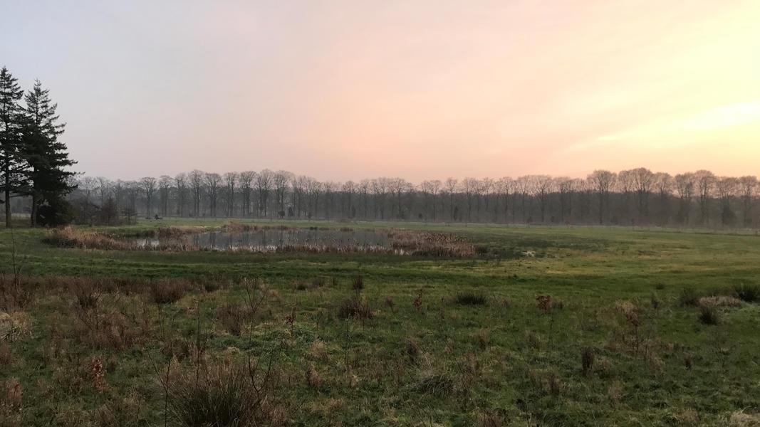 Camping on a beautiful estate near Den Bosch #6