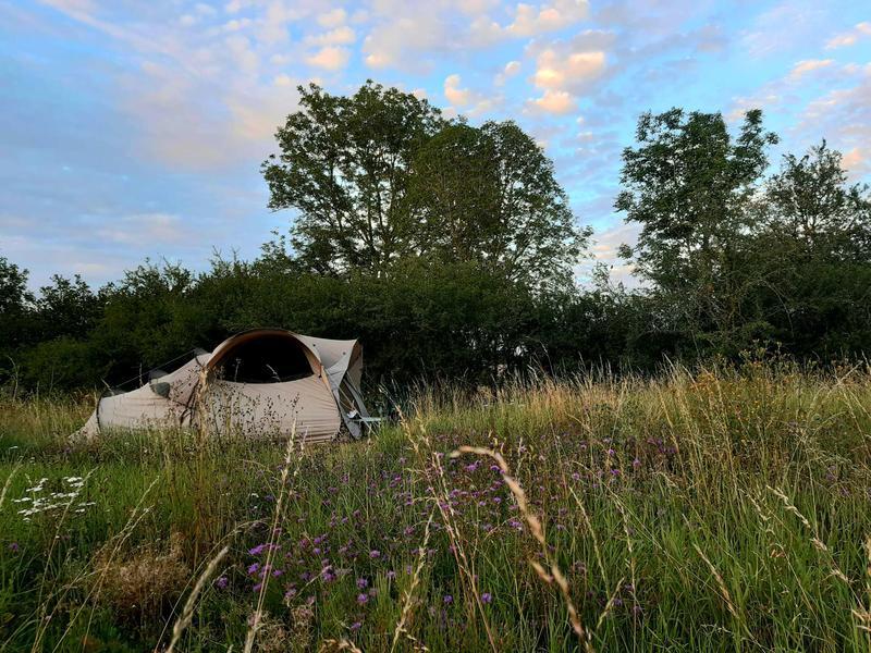 rustig kamperen met vijver! (2) #9