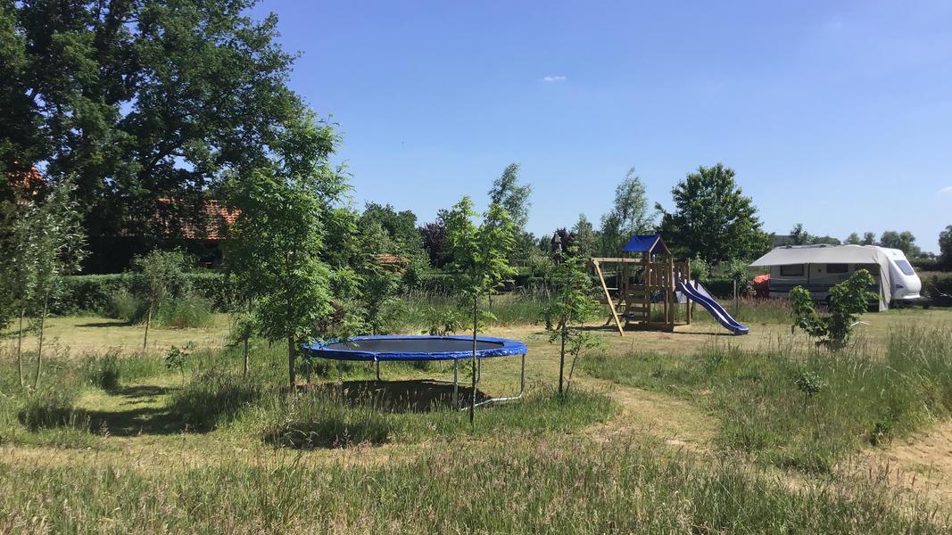 Camper plek op landgoed met zwemvijver, vuurplaatsen en 2ha wandelgebied #9