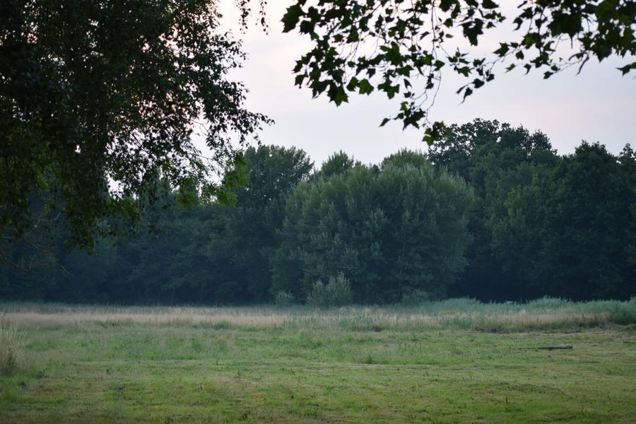 De vallei nabij het Eetgoed (N): genieten van een vuurtje onder de sterrenhemel #11