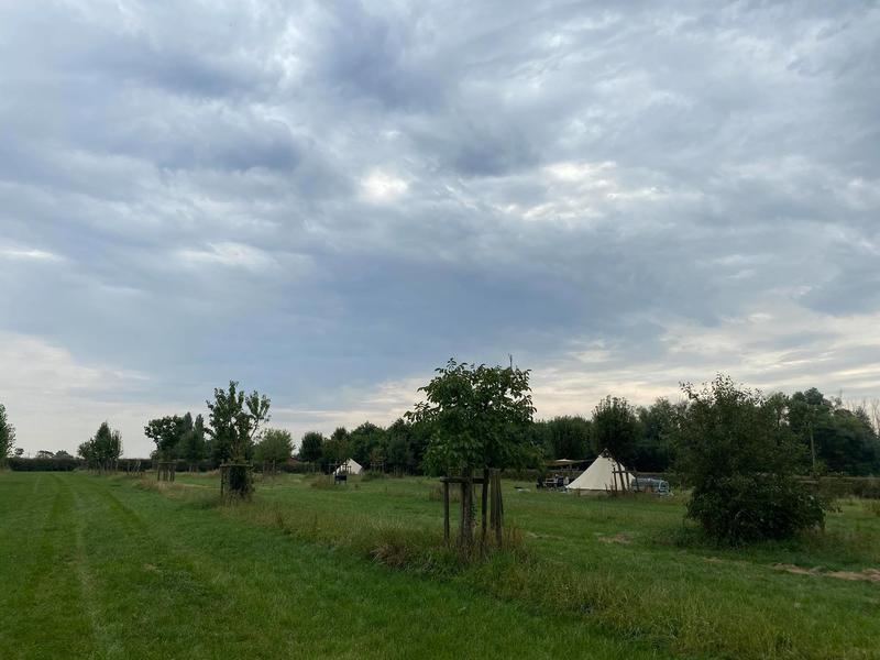 Camping with a wide view over the fields #15