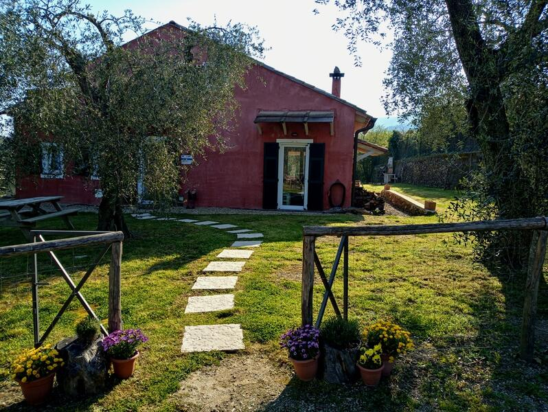 Little family agricamping in the Ligurian countryside, with swimming pool #3