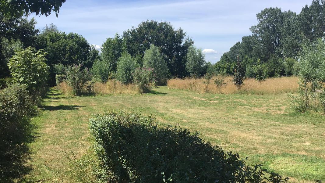 Camper plek op landgoed met zwemvijver, vuurplaatsen en 2ha wandelgebied #12