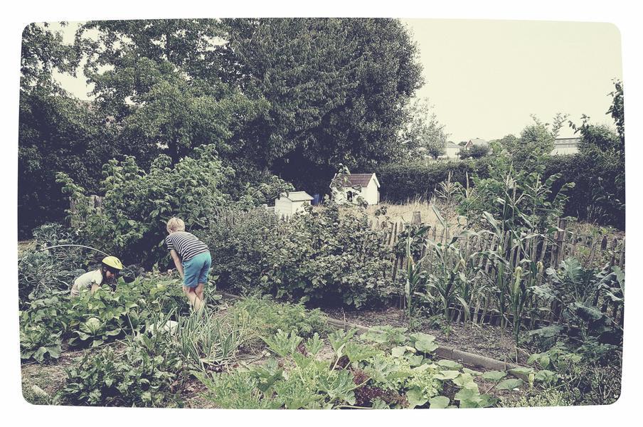 Kindvriendelijke tuin of weiland in Letterhoutem! #5