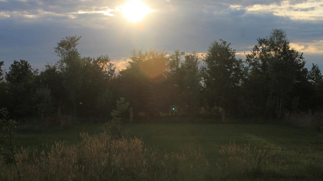 Camper plek op landgoed met zwemvijver, vuurplaatsen en 2ha wandelgebied #56