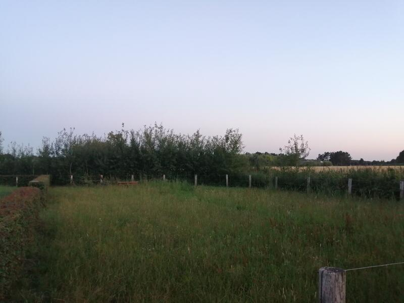 Quiet place to sleep in a meadow #3