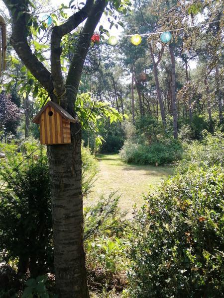Off-grid - Ecobobo on the edge of the Loonse- en Drunense Duinen (DW) nature park #3