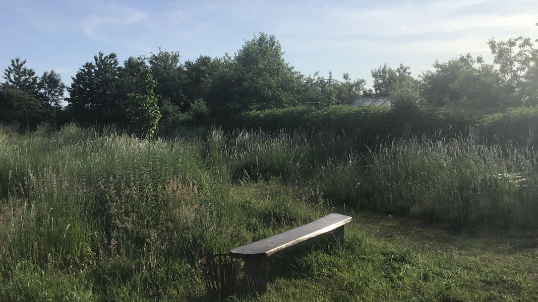 Camper plek op landgoed met zwemvijver, vuurplaatsen en 2ha wandelgebied #44