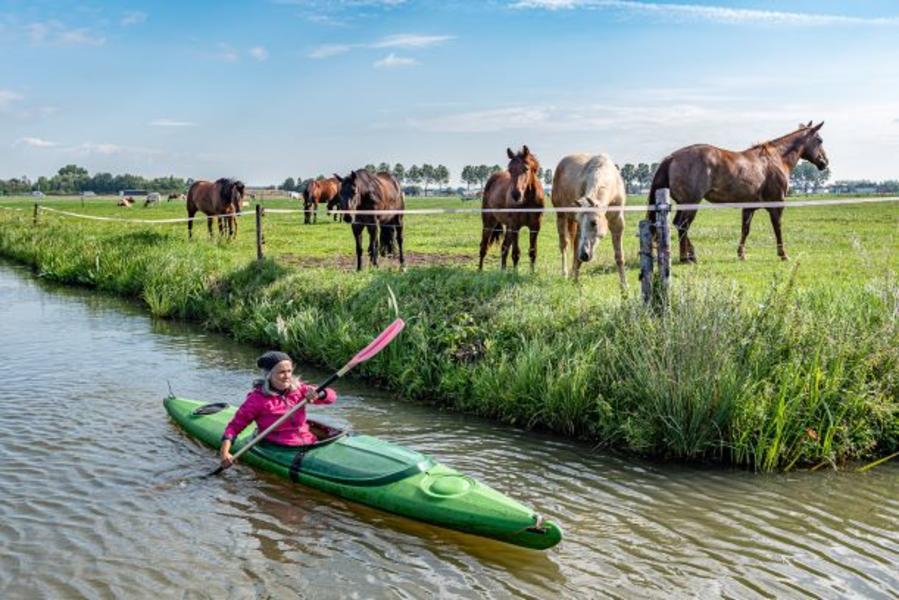 Primitief kamperen in een caravan(3pers) op een boerenerf(met kanos!) #10