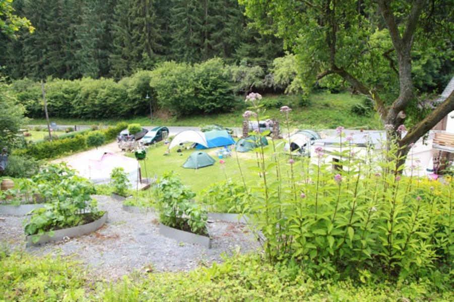 Minicamping an der Densborner Wassermühle #2