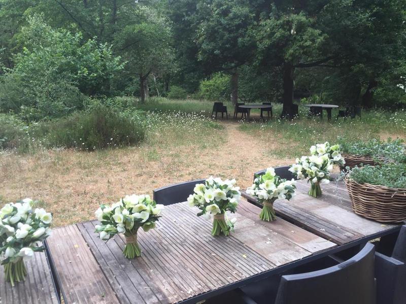 Prachtige ecologische tuin dicht bij Brugge #5