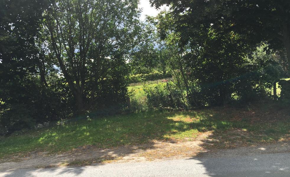Shady parking space between Gehnwald and Alfsee #2