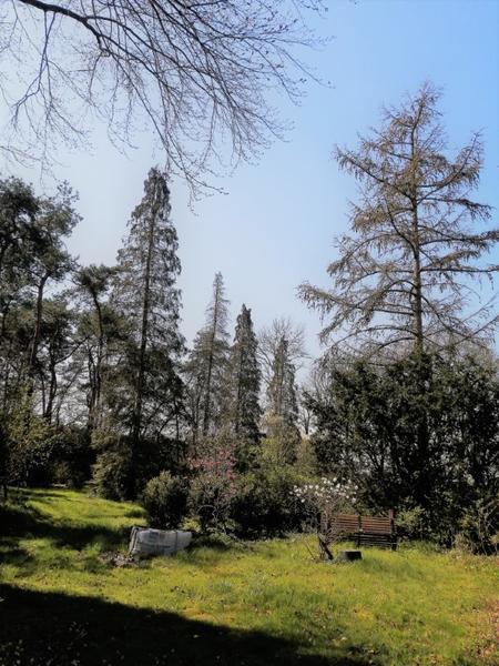 Offgrid - Ecobobo on the edge of the Loonse- en Drunense Duinen (TT) nature park #3