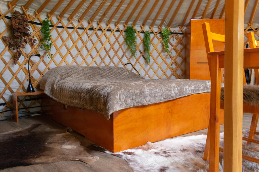 Cozy yurt in a small orchard! #3