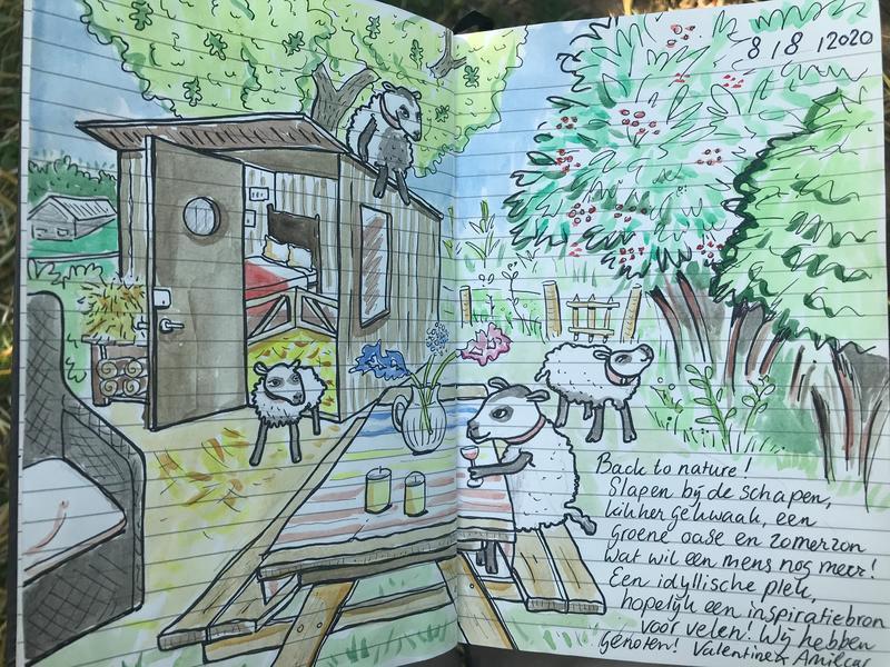 Sleep with the sheep: Pietje, Wally, Chrisje & Rolf #8