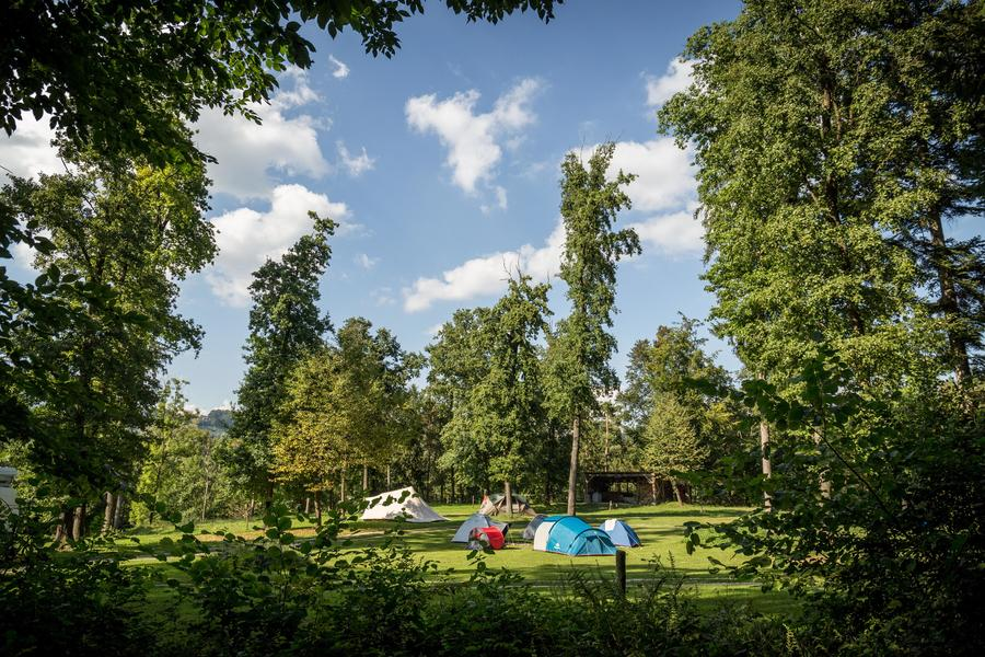 Rent a pitch in beautifull forest by the Alpine river Savinja #6