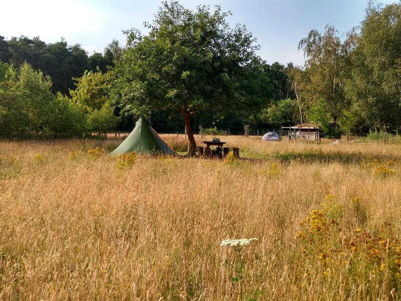 Idillyc micro-campsite near the forest & Ecoglamping in Limburg