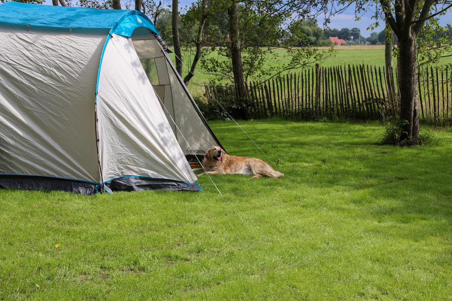 Nice and free camping on the border of Drenthe-Friesland-Groningen #1