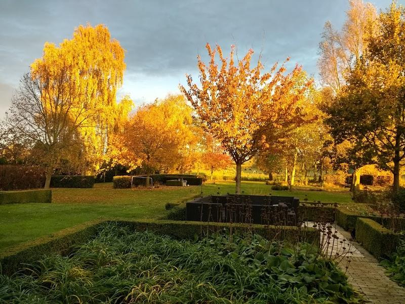 beautiful garden in a quiet village not far from Bruges; beautiful nature #9