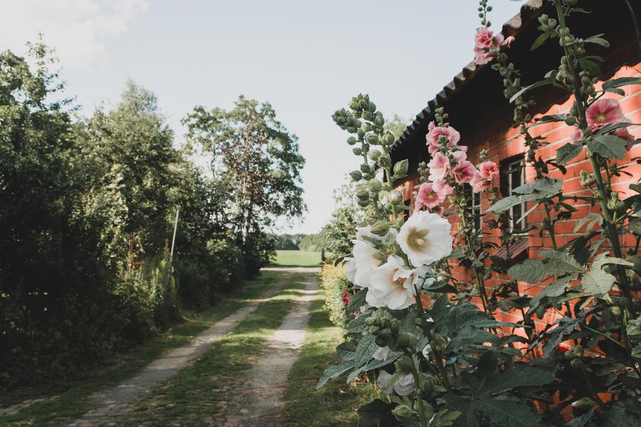 Mooie kampeerplek, het prachtige Westerkwartier, weg van de massa. #7