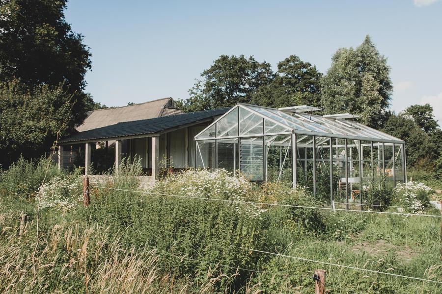 Mooie kampeerplek, het prachtige Westerkwartier, weg van de massa. #6