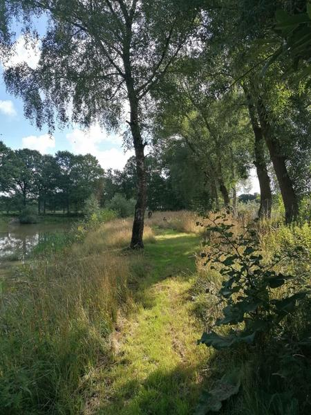 Beautiful piece of nature near a nature reserve. #3