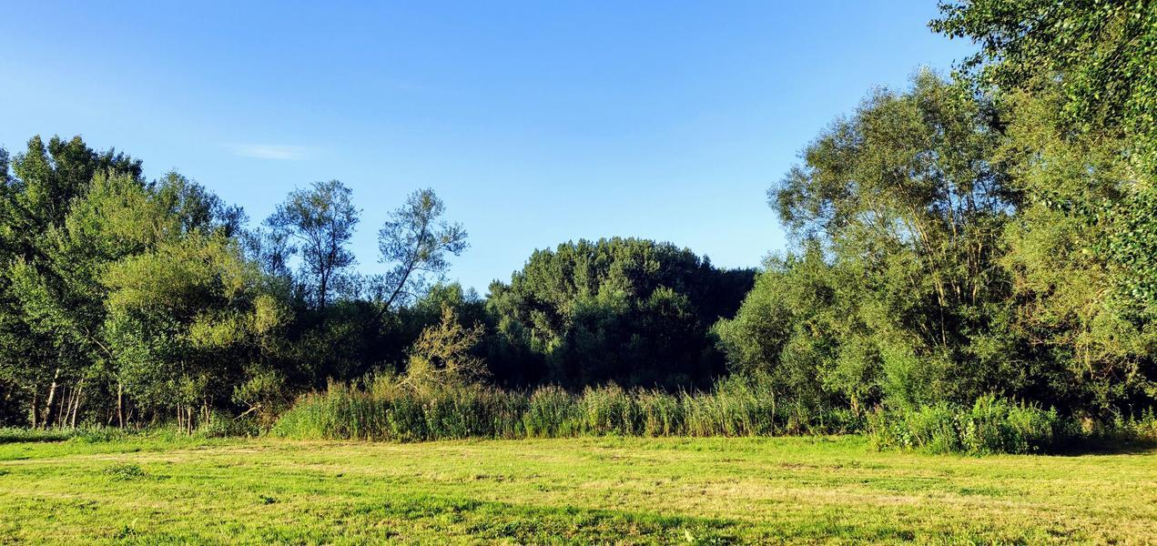 De vallei nabij het Eetgoed (N): genieten van een vuurtje onder de sterrenhemel #6